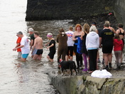 Appledore New Year's Day swim