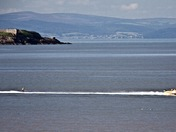 Waterski Competition