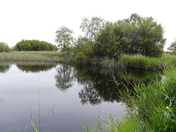 Visit to the lovely Peat Moors.