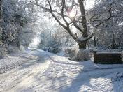 snow scenes at Mattishall
