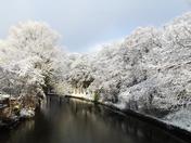 River Wensum at Bishopbridge