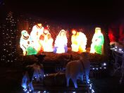 Christmas lights at Snettisham