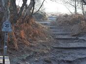 Dunwich Heath Walk