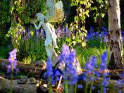 Photo Challenge - Theme: Gardens