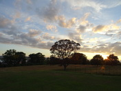 Sunset seen from A La Ronde grounds