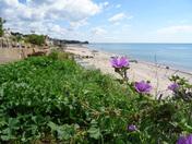 A view over Budleigh beach