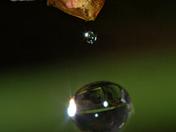 Exmouth raindrop reflection