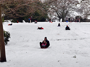 Sledging on the Green