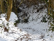 Path down to Kersbrook