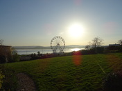 The Exmouth Wheel seen from Louisa Terrace in the evening sun.