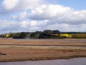 Otter Estuary again