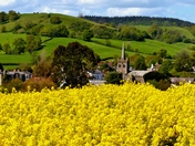 Beautifull East Devon