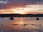 Exmouth Estuary Sunset