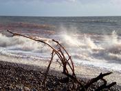 Flotsam on Budleigh beach