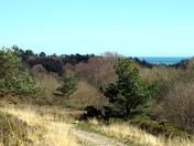 Above Squabmoor reservoir