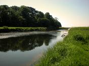 Otter river path