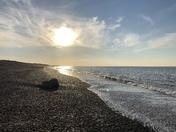 Weybourne beach walk