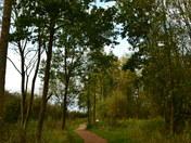 Beautiful countryside