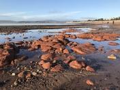 Maer rocks on a beautiful sunny day
