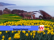 Photo Challenge: Spring Colours