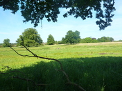 A cycle ride into the countryside