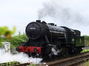 90775 The Royal Norfolk Regiment Steam Locomotive