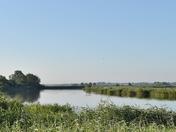 River Yare at Buckenham Marshes