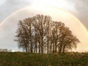 Project 52 -Rainbows