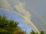 Project 51 - Rainbow