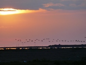 BLAKENEY AS THE SUNSETS