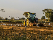 Project 52 - Agriculture