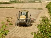 Hadleigh Harvest 2020
