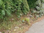 Rubbish everywhere