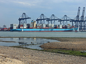 Saturday at Shotley