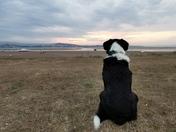 Watching the sun set