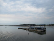 """The view of """"River Exe Cafe"""""""