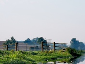 Waveney River