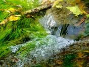Bubbling water