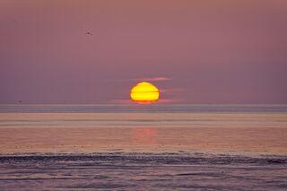 Indian Summer Sun…