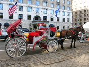 PROJ 52, TRAVEL. HORSE CARRIAGE IN NEW YORK