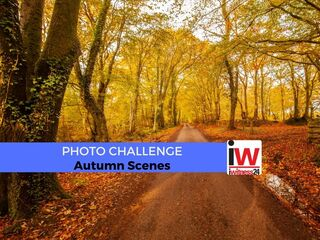 PHOTO CHALLENGE: Autumn Scenes