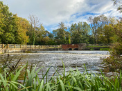 River Wensum at Costessey