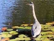 Trip to Easton Park