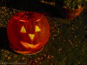 Project 52 - Week 44 - Halloween