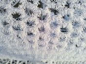Icy blast 17/01/13 pretty formation on chicken wire