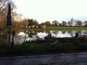 Earith Floods