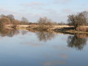 Great Ouse at Paxton Pits
