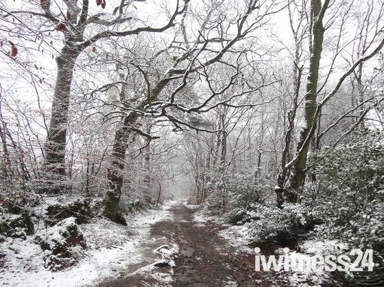 Snow near Exmouth, January 2013