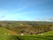 A view from South Molton
