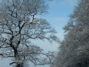 This photo was taken on Sat 19th Jan around South Molton